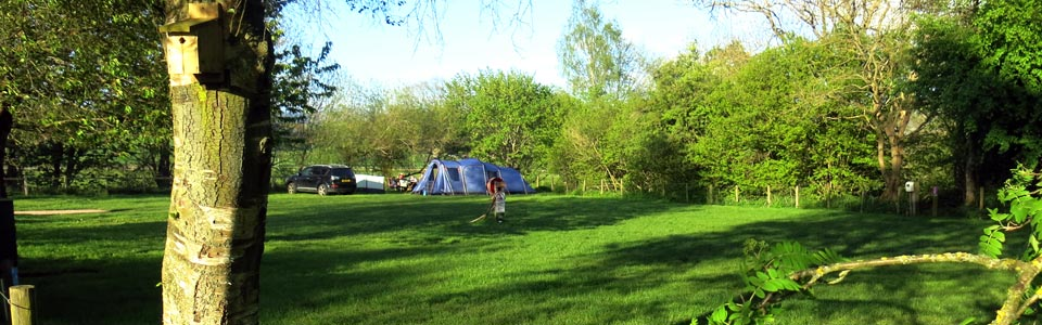 Photo: camp site at Lazonby Pool